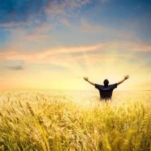 worship until you wonder
